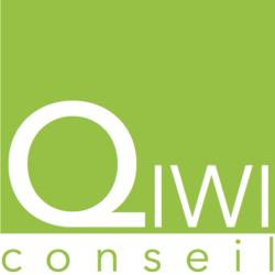 QIWI Conseil